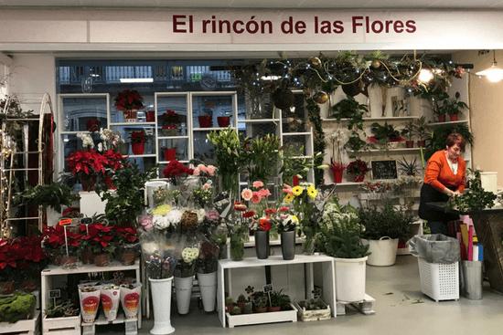 El Rincon de las Flores